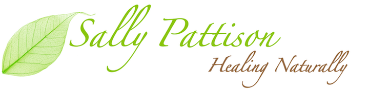 Sally Pattison logo